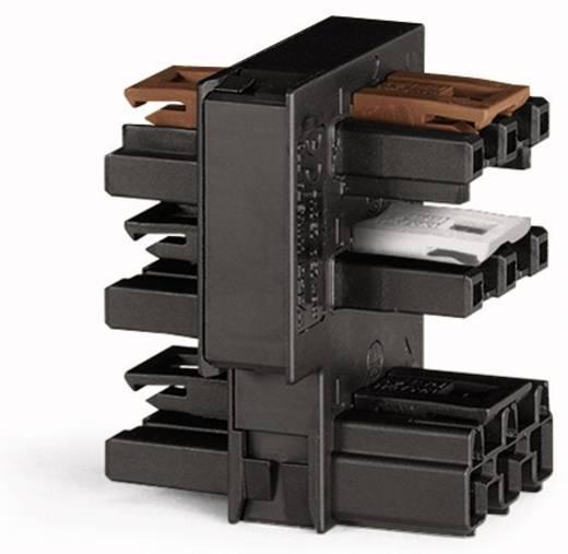 Hálózati elosztó pólusszám: 3, fekete, WAGO 770-638, 10 db