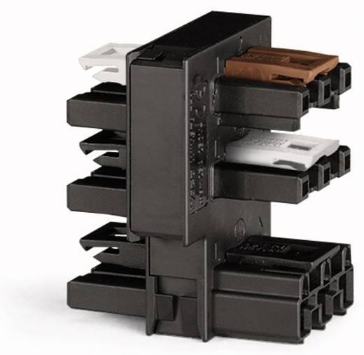 Hálózati elosztó pólusszám: 3, fekete, WAGO 770-637, 10 db