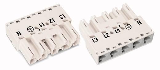 Hálózati csatlakozó dugó, egyenes, pólusszám: 5, 25 A, fehér, WAGO 770-435, 50 db