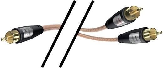 RCA audio kábel, 2x RCA dugó - 1x RCA dugó, 10 m, aranyozott, átlátszó, Inakustik 1012789