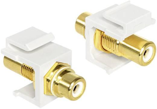 Átalakító adapter RCA alj/F alj, fehér, aranyozott