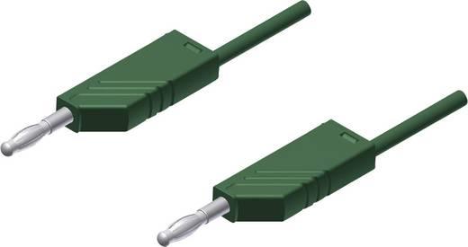 Mérőzsinór, mérővezeték 2db 4mm-es toldható banándugóval 2,5 mm² PVC, 25cm zöld SKS Hirschmann MLN 25/2,5
