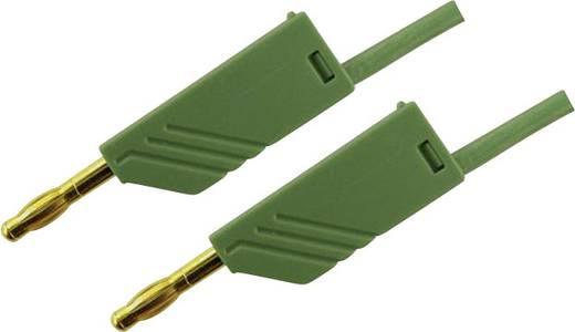 Mérőzsinór, mérővezeték 2db 4mm-es toldható banándugóval 2,5 mm² PVC, 1.5 m zöld SKS Hirschmann MLN 150/2,5 Au