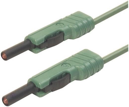 Mérőzsinór, mérővezeték 2db 4mm-es toldható banándugóval 1 mm² PVC, 25cm zöld SKS Hirschmann MLB 25/1 V