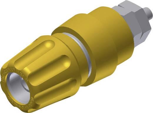 Póluscsipesz 63 A, sárga, 4 mm, M6 SKS Hirschmann 930136103