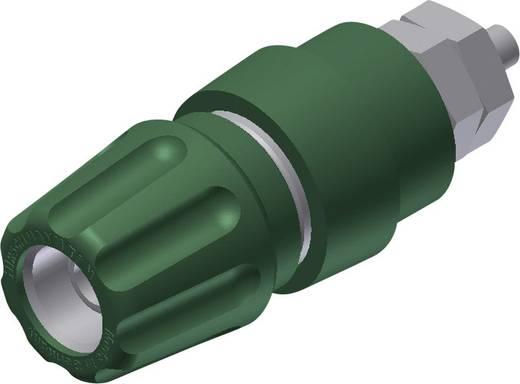 Póluscsipesz 63 A, zöld, 4 mm, M6 SKS Hirschmann 930136104