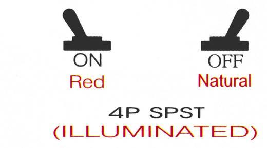 SCI Billenőkapcsoló, 30 A, gépkocsiba R13-403A vörös/natúr 1 x be/kii bennmaradó/bennmaradó 12 V/DC 30 A
