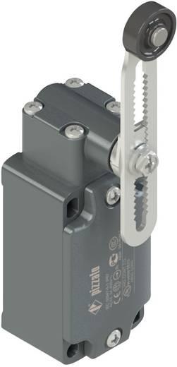 Végálláskapcsoló, görgős/állítható, 250 V/AC 6 A, IP67, Pizzato Elettrica FD 556-M2