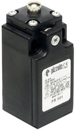 Végálláskapcsoló, csapos, 250 V/AC 6 A, IP67, Pizzato Elettrica FR 501-M2