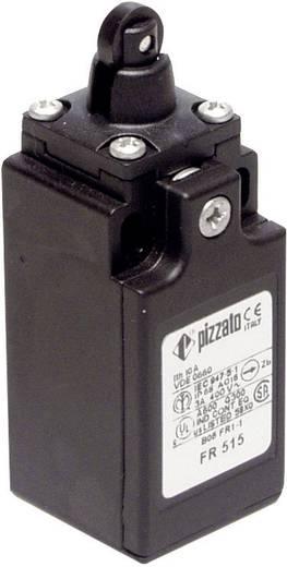 Végálláskapcsoló, görgős, 250 V/AC 6 A, IP67, Pizzato Elettrica FR 515-M2