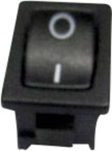 Billenőkapcsoló R13-66E-02