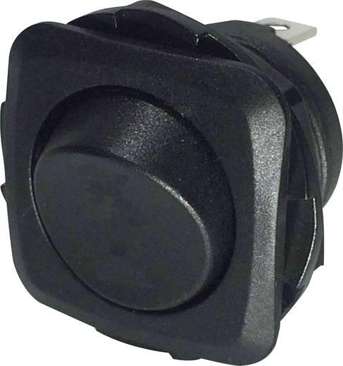 Billenőkapcsoló R13-135D-02