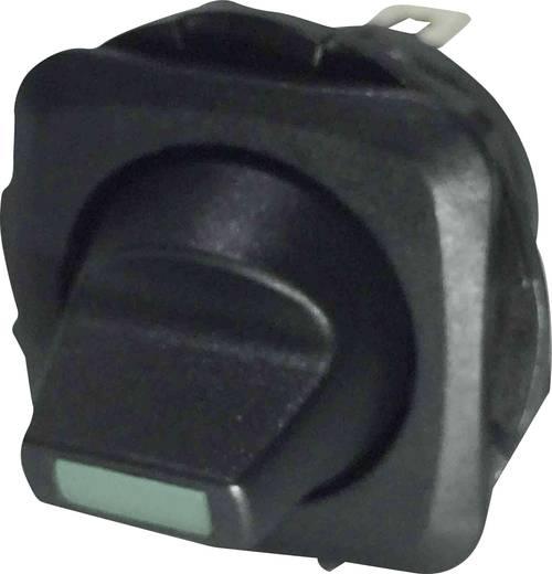 Billenőkapcsoló R13-135LP-02 zöld