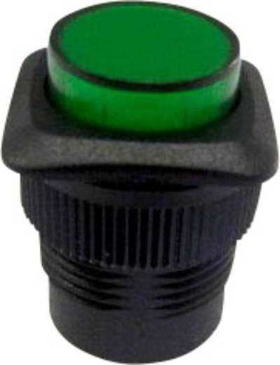 Nyomókapcsoló 250 V/AC 1,5 A, 1 x ki/be, zöld, SCI R13-508B-05YL