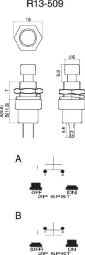 Nyomógomb 250 V/AC 1,5 A, 1 x ki/(be), zöld, SCI R13-509A-05GN