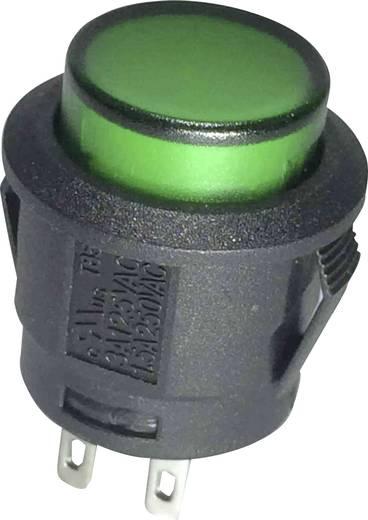 Nyomógomb 250 V/AC 6 A, 1 x ki/(be), zöld, SCI R13-527AL-02GN