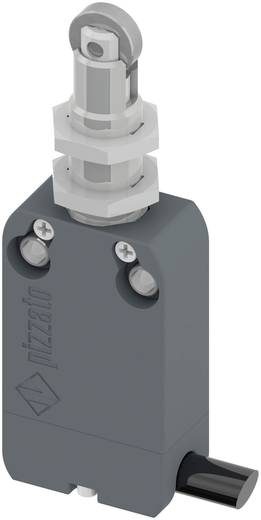 Végálláskapcsoló, görgős, 250 V/AC 4 A, IP67, Pizzato Elettrica NF B110FB-DN2