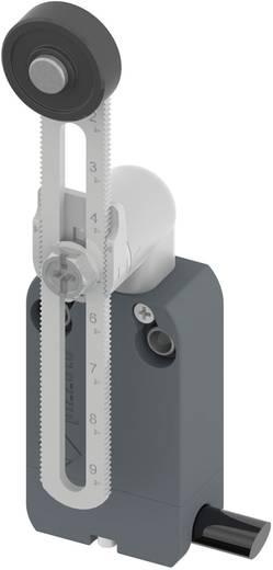 Végálláskapcsoló, görgős/állítható, 250 V/AC 4 A, IP67, Pizzato Elettrica NF B112KP-DN2