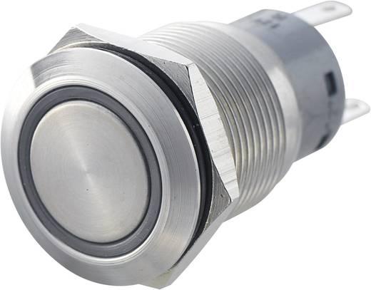 Vandálbiztos nyomógomb kör világítással, zöld, 19 mm, 250V/AC, 5A, LAS1-AGQ-11E, GREEN