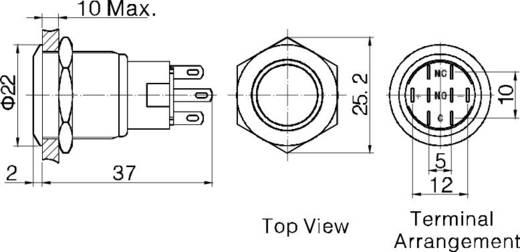 Vandálbiztos nyomókapcsoló körvilágítással, 19 mm, 250 V/AC 5A, piros, LAS1-AGQ-11ZE, Red