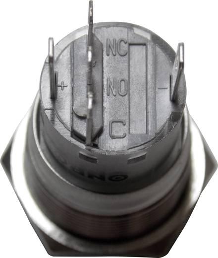 Vandálbiztos nyomógomb kör világítással, kék, 19 mm, 250V/AC, 5A, LAS1-AGQ-11E, BLUE