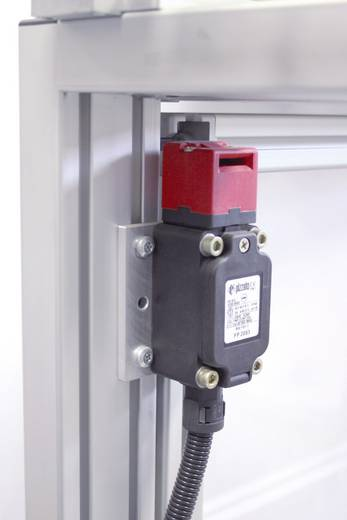 Biztonsági kapcsoló 250 V/AC 6 A, IP67, Pizzato Elettrica FR 993-M2