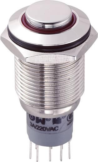 Vandálbiztos nyomókapcsoló körvilágítással, 16 mm, 250 V/AC 3A, piros, LAS2GQH-22ZE/R/12V/N/P