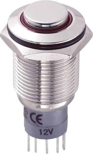 Vandálbiztos nyomókapcsoló körvilágítással, 16 mm, 250 V/AC 3A, piros, LAS2GQH-11ZE/R/12V/N/P