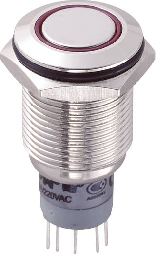 Vandálbiztos nyomókapcsoló körvilágítással, 16 mm, 250 V/AC 3A, piros, LAS2GQF-22ZE/R/12V/N/P
