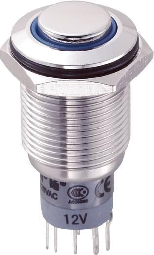 Vandálbiztos nyomókapcsoló körvilágítással, 16 mm, 250 V/AC 3A, kék, LAS2GQH-22ZE/B/12V/S/P