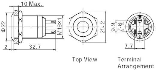 Vandálbiztos nyomógomb kör világítással, piros 19 mm 250V/AC 5A 1 x KI/(BE) TRU COMPONENTS LAS1-GQ-11E/R/12V