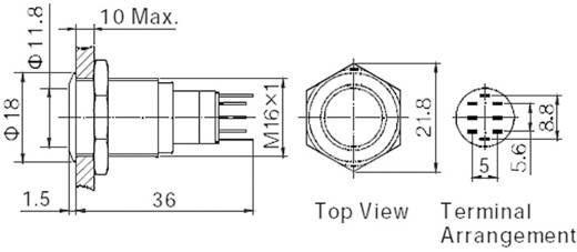 Vandálbiztos nyomókapcsoló körvilágítással, 16 mm, 250 V/AC 3A, piros, LAS2GQH-22ZE/R/12V/S/P