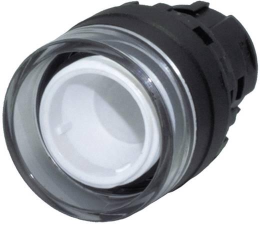 Nyomógomb, világító galléros, fekete, Idec YW1L-MF00