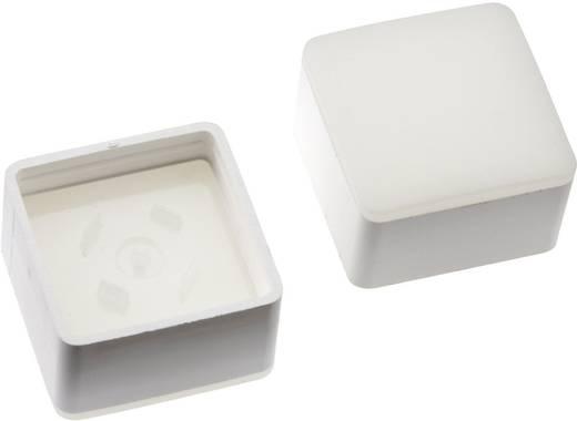 Megvilágítható nyomógomb sapka RAFI RACON 8 nyomógombhoz, fehér, Mentor 2271.1007