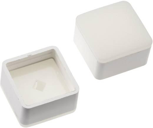 Megvilágítható nyomógomb sapka Mentor 1254 nyomógombhoz, fehér, Mentor 2271.1009