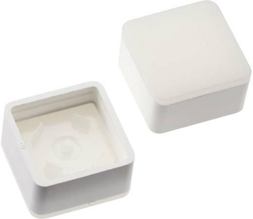 Megvilágítható nyomógomb sapka RAFI RACON 8 nyomógombhoz, fehér, Mentor 2271.1010