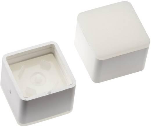 Megvilágítható nyomógomb sapka RAFI RACON 8 nyomógombhoz, fehér, Mentor 2271.1012
