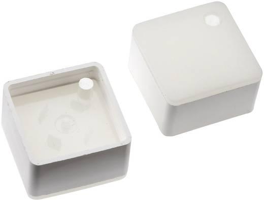 Megvilágítható nyomógomb sapka RAFI RACON 8 nyomógombhoz, fehér, Mentor 2271.1107