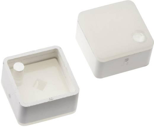Megvilágítható nyomógomb sapka Mentor 1254 nyomógombhoz, fehér, Mentor 2271.1109