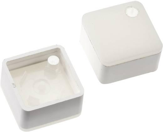 Megvilágítható nyomógomb sapka RAFI RACON 8 nyomógombhoz, fehér, Mentor 2271.1110