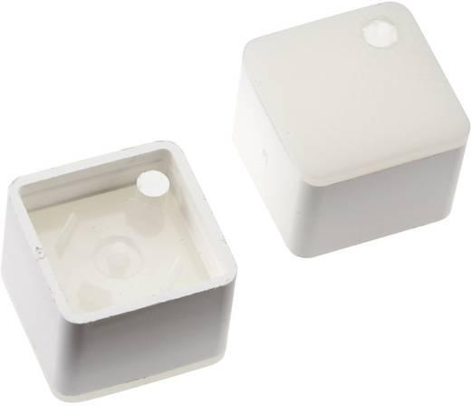 Megvilágítható nyomógomb sapka RAFI RACON 8 nyomógombhoz, fehér, Mentor 2271.1112