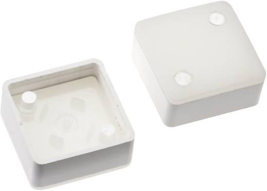 Megvilágítható nyomógomb sapka RAFI RACON 8 nyomógombhoz, fehér, Mentor 2271.1204
