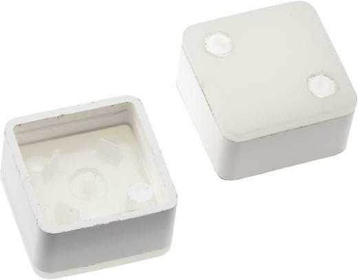 Megvilágítható nyomógomb sapka RAFI RACON 8 nyomógombhoz, fehér, Mentor 2271.1210