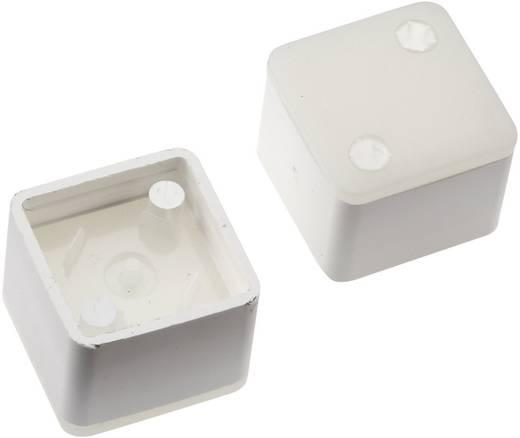 Megvilágítható nyomógomb sapka RAFI RACON 8 nyomógombhoz, fehér, Mentor 2271.1212