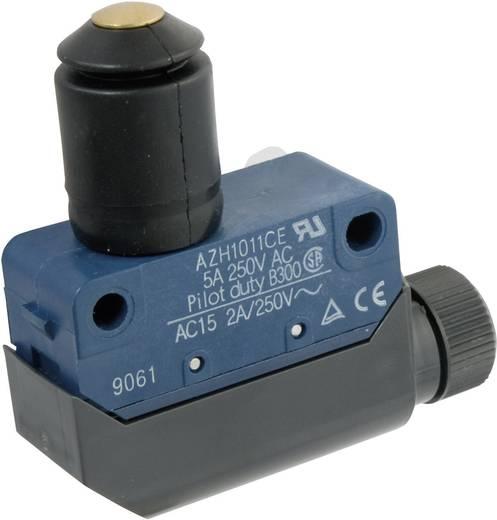Végálláskapcsoló 250 V/AC 5 A, IP64, nyomócsapos, Panasonic AZH1011CEJ