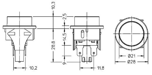 Nyomókapcsoló 250 V/AC 16 A, 2 x be/ki, interBär 3656-250.22