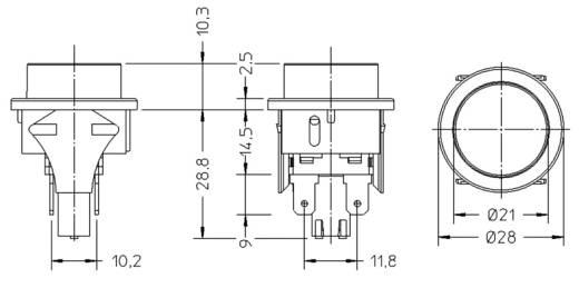 Nyomógomb 250 V/AC 16 A, 2 x ki/(be), interBär 3656-001.22
