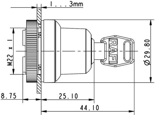RAFIX 22 FS kulcsos kapcsoló 90 °, fém, RAFI 1.30.255.202/0000