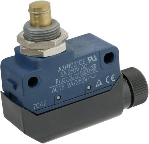 Végálláskapcsoló 250 V/AC 5 A, IP64, nyomócsapos, Panasonic AZH1031CEJ