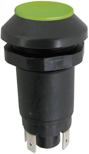 Nyomógomb 48 V/DC/AC 0,5 A, 1 x be/(ki), IP67, zöld, Elobau 145000AA10